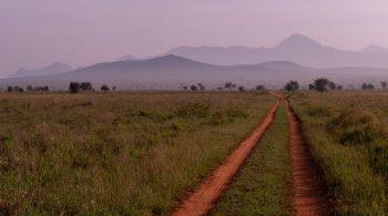 trail-6065298_1920